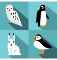 Polar animals in flat style with long shadow vector image vector image