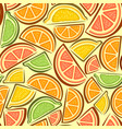 seamless pattern citrus slices vector image vector image