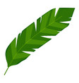 banana leaf icon cartoon style