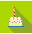 Birthday cake icon flat style vector image vector image