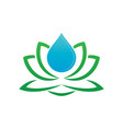 lotus and water drop logo image vector image