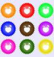 Coconut Cocktail icon sign Big set of colorful vector image