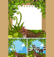 background scenes with raccoons and paper vector image vector image