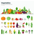Banner Icons of Vegetables Healthy Food vector image vector image