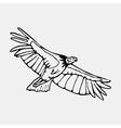 Birds of prey 01 vector image vector image
