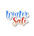 calligraphy of winter sale in blue and red vector image