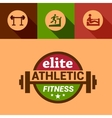 flat elite fitness design elements vector image