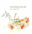 Floral background in watercolor style vector image