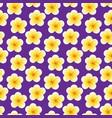 seamless plumeria flowers beautiful tropical vector image