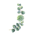 watercolor wreath with eucalyptus leaves vector image