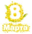 Yellow mimosa flower Mimosa flower symbol of