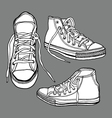 sneaker shoes vector image