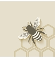 bee honeycomb background vector image vector image