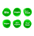 bio veggie farm vegan organic food label vector image vector image