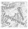 entrepreneur website Word Cloud Concept vector image vector image