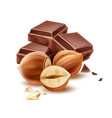 realistic chocolate piece with 3d hazelnut vector image vector image