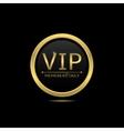 vip icon vector image vector image