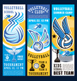 volleyball sport game ball net and trophy cup vector image