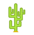 cactus isolated large peyote from desert on white vector image