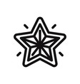 christmas star icon vector image