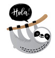 cute sloth bear animal says hola vector image