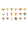 mushroom icon set cartoon style vector image