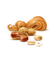 realistic peanut butter with shell and nuts vector image vector image