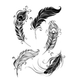 set feathers vector image vector image
