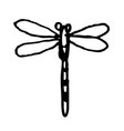 dragonfly doodle hand drawn vector image