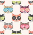 background with funny cats with summer sunglasses vector image vector image