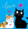 bright postcard with love cats vector image