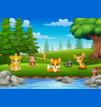 little animals are enjoying nature by the river vector image vector image
