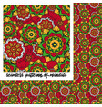 mandala pattern on red vector image