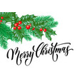 merry christmas greeting card holly leaf berry vector image