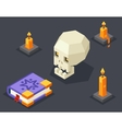 Night Wisdom Magic Icon Skull Spellbook Candles vector image vector image