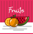 watermelon and orange fruits fresh juicy collage vector image vector image