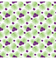 acai berries seamless pattern vector image vector image