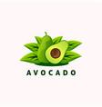 avocado fruit logo design vector image
