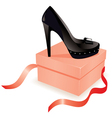 black shoe on the box vector image vector image
