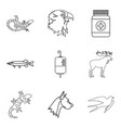 professional vet icons set outline style vector image vector image