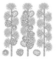 set of black and white images of larch branches vector image vector image