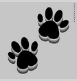 traces of black color on a gray background vector image
