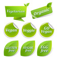 Vegan Labels Big Set vector image