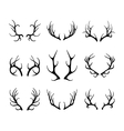 deer antlers isolated on white vector image