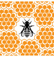 background with honeycomb and bee for vector image vector image