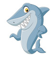 cartoon shark waving on white background vector image vector image