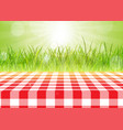 red and white tablecloth against a defocussed vector image