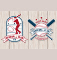 set of baseball or softball club badge vector image