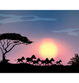 silhouette horses running in field vector image vector image
