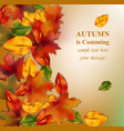 autumn leaves on blurry background realistic vector image vector image